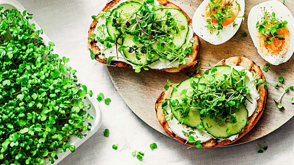 How to Grow Microgreens Inside