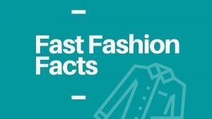 Fast Fashion Facts Infographic