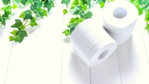 Best eco friendly toilet paper