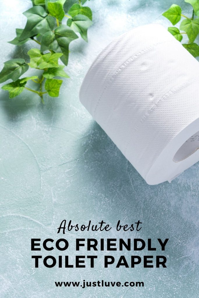 Eco-friendly-toilet-paper-pin1